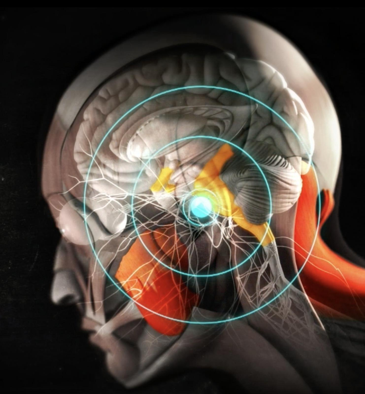 Tinnitus und Schwindel